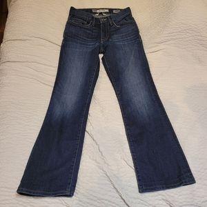 Bke Aiden jeans 28R